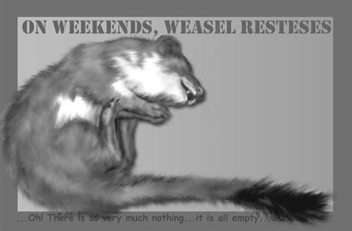weasel resteses
