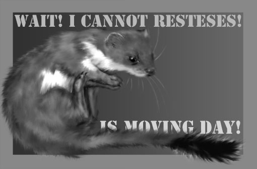 weasel's moving day