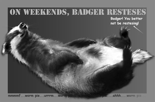 badger resteses