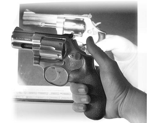 Weasel's S&W 686 revolver