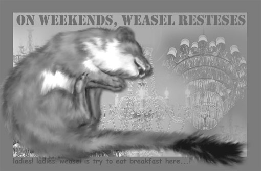friday with weasel