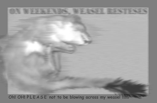don't blow across my weasel!
