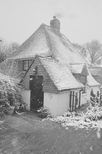 snow on badger house