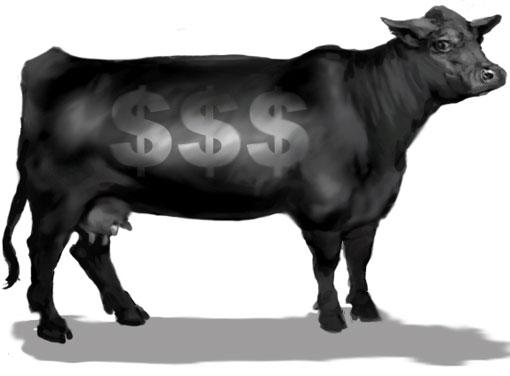 gore family cow