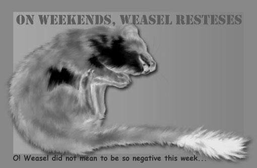 negative weasel
