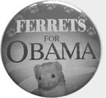 ferrets for obama