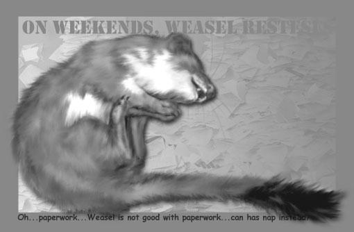 weasel paperwork