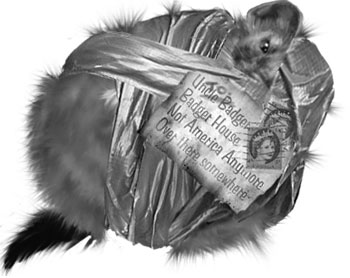 duct tape weasel