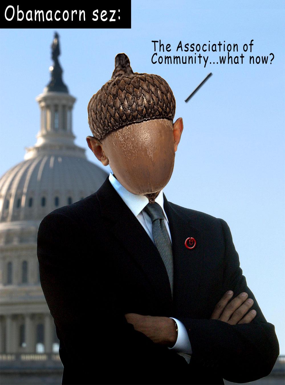 obamacornlg