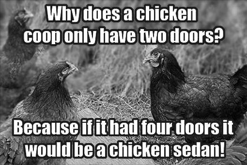 chickensedan